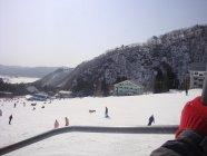 Organizowanie bezpiecznych i niezapomnianych wyjazdów na narty nie jest taka prosta.